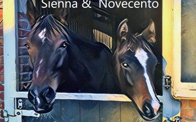 Sienna En Novecento Maken Zich Op Voor De Winter
