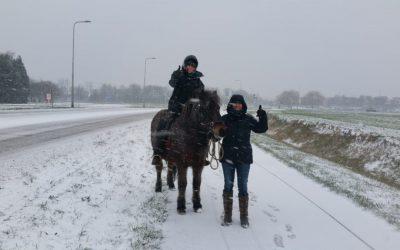 Winter Op De Kraaghoeve