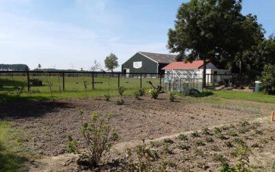 Dagbesteding Aan De Herengracht En Tuinieren Op De Kraaghoeve Van Start